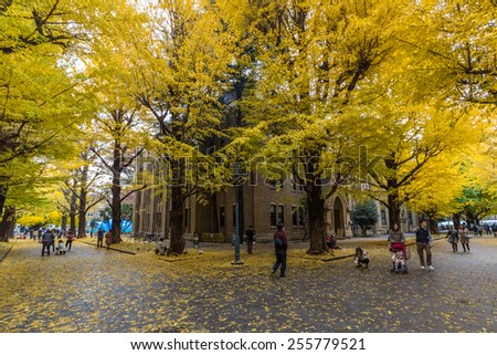 TOKYO, JAPAN - DEC 01, 2014: The Hongo campus of University of Tokyo in Autumn. The main Hongo campus occupies the former estate of the Maeda family, Edo period feudal lords of Kaga Province. - stock photo