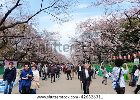 TOKYO, JAPAN - MARCH 29, 2016: Ueno Park during the cherry blossom season on 29 March 2016. Ueno Park is one of Tokyo's most popular and lively cherry blossom spots with more than 1000 cherry trees.  - stock photo