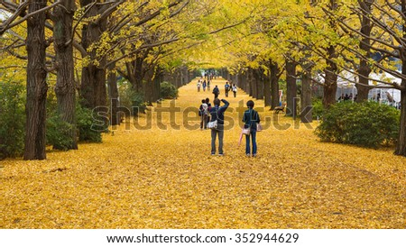 Tokyo, Japan - Nov 18, 2015 : Autumn is the peak period for travel at Showa Kinen Park, Tokyo, Japan. Maidenhair trees chang to yellow. It is beautiful scene. - stock photo