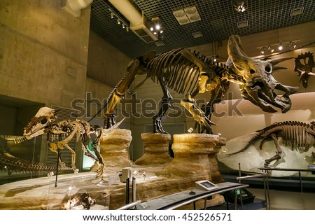 TOKYO, JAPAN - NOVEMBER 25 2015: National Museum of Nature and Science offers a wide variety of natural history exhibitions and interactive scientific experiences - stock photo