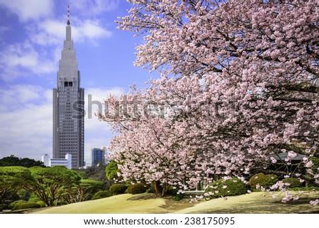 Tokyo, Japan springtime at Shinjuku Gyoen Park. - stock photo