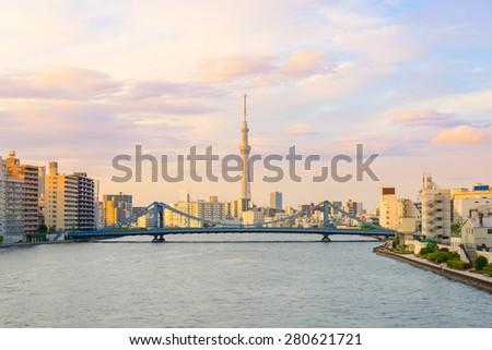 Tokyo Metropolitan Skyline in the Evening - stock photo
