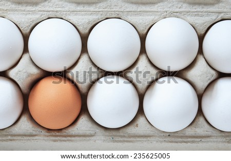 Tolerance concept. One brown egg among set of white eggs in box - stock photo
