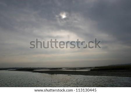 tolomato river marsh - stock photo