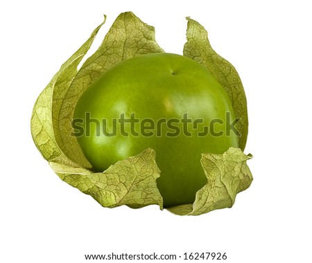 Tomatillo against white background with clipping path - stock photo