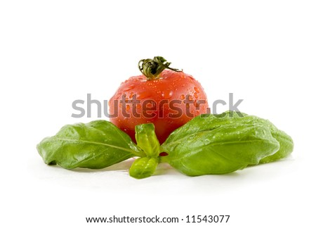 Tomato and basil isolated on white background - stock photo