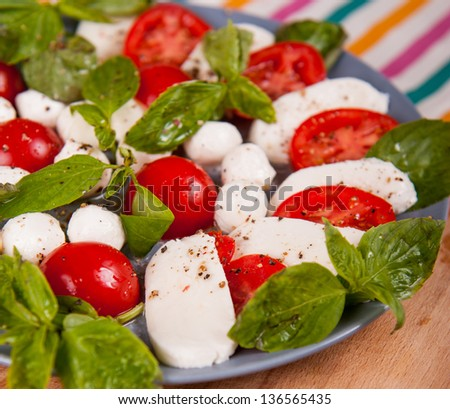 Tomato and mozzarella slices decorated with basil leaves on a plate - stock photo