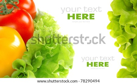 Tomato and salad leaf isolated on white background - stock photo