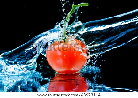 Tomato and splash water - stock photo