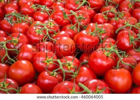 tomato background - raw tomatoes closeup