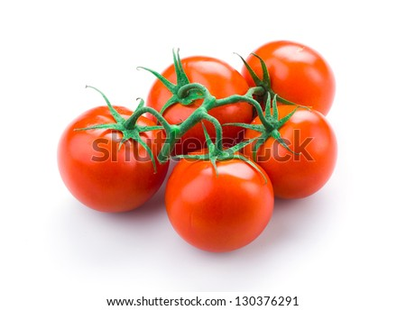 Tomato branch - stock photo