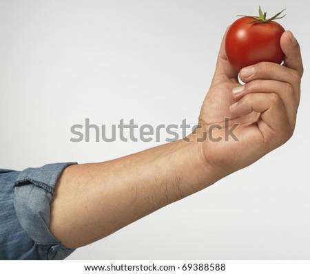 tomato in hand - stock photo