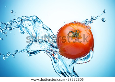 Tomato in spray of water. Juicy tomato with splash on background - stock photo
