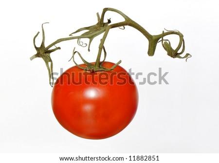 Tomato Isolated - stock photo