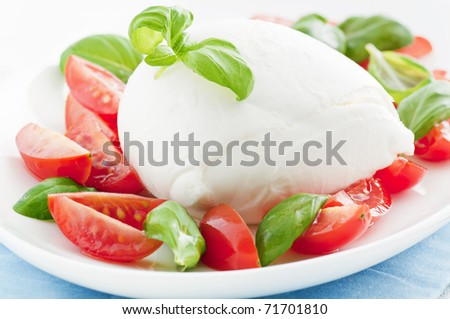Tomato Mozzarella - stock photo