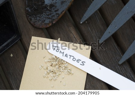 Tomato seeds ready to plant with hand written label. - stock photo