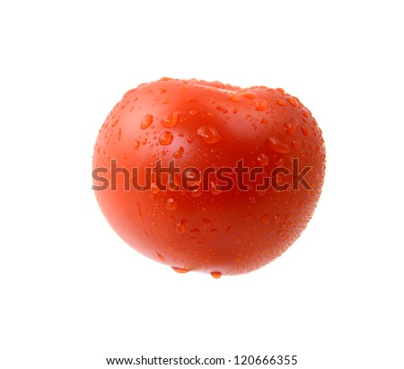 tomato with drops - stock photo