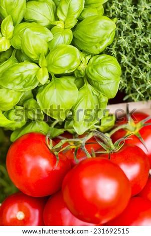 Tomatoes and basil - stock photo