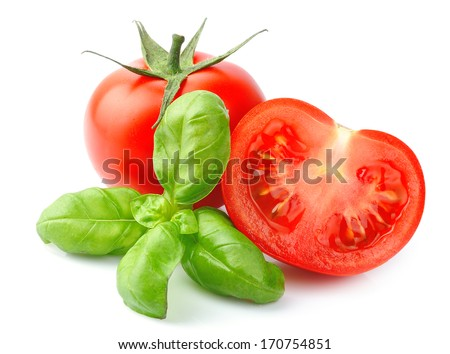 Tomatoes and basil leaves isolated on white close up. Vegetables  - stock photo