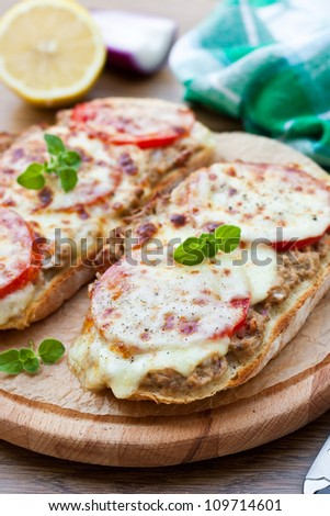 Tomatoes and cheese warm sandwiches