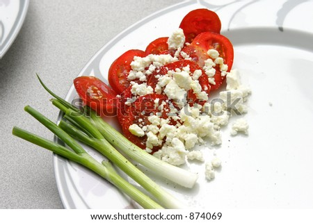 Tomatoes and scallion - stock photo