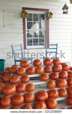 Tomatoes and two chairs on porch in rural Virginia - stock photo