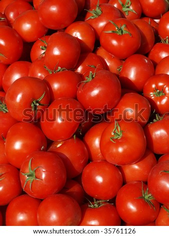 Tomatoes at a market. - stock photo