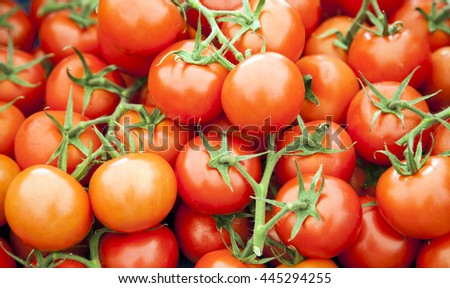 Tomatoes background. Full frame of ripe salad red vine fruit.