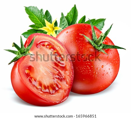 Tomatoes. Composition with leaves and flower isolated on white - stock photo