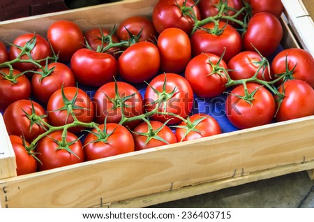 Tomatoes for sale at farmers market in Provence in France.