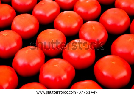 Tomatoes in a row at the market