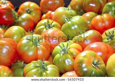 tomatoes in market raff tomato vegetable food from Spain - stock photo