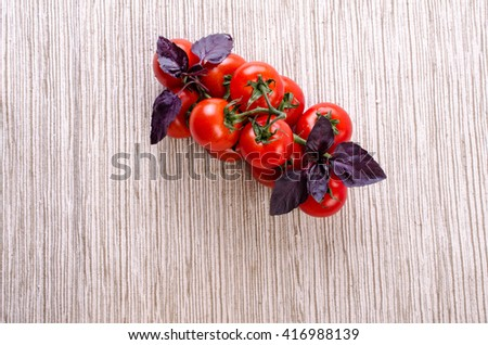 Tomatoes on a branch and basil. On a light background.