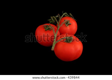 Tomatoes on black background - stock photo