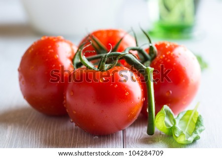 Tomatoes on the vine and basil leaves for salad - stock photo
