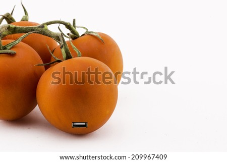 tomatoes with a USB-port, the evolution of the fruit - stock photo