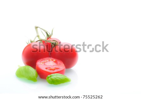 tomatoes with basil isolated against a white background