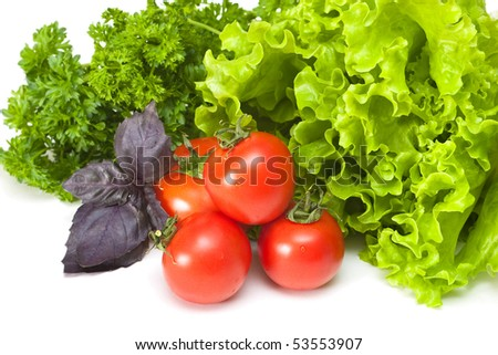 Tomatoes with salad and basil on a white background