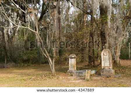 Tombstones from Civil War times in South Carolina forest - stock photo