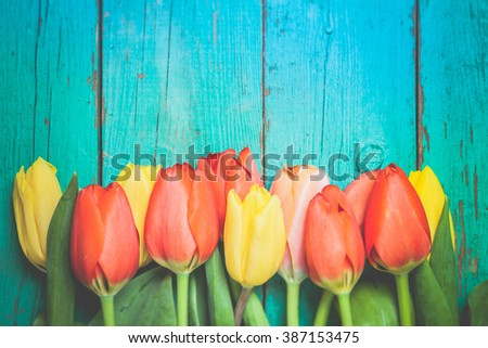 Toned photo. Color tone tuned. Fresh red tulip flowers bouquet on wood. Natural spring or Valentine's Day, Mother's Day theme.  - stock photo