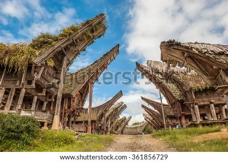 Tongkonan houses, traditional Torajan buildings, Tana Toraja, Sulawesi, Indonesia - stock photo