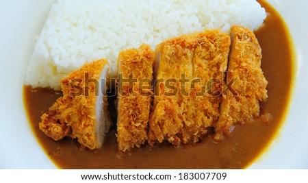 Tonkatsu with Rice, Japanese Cuisine - stock photo