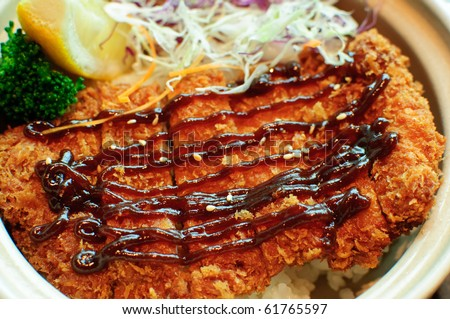 Tonkatsu with rice or aka fried pork cutlet with japanese sweet sauce - stock photo