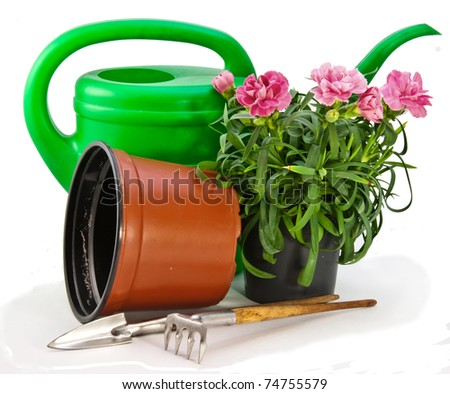 Tools for transplant plants - stock photo