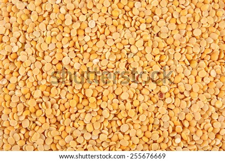 Toor dal, famous Indian legume also called yellow Pigeon peas.Selective focus. - stock photo