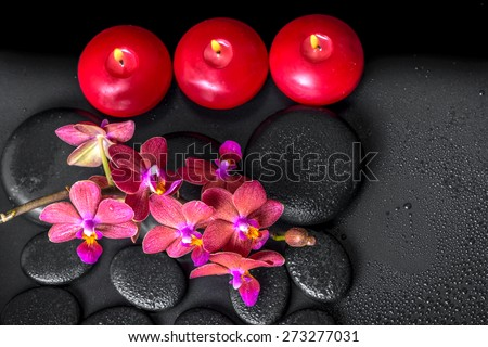 top down spa composition of blooming twig red orchid flower, phalaenopsis with water dew and candles on zen basalt stones - stock photo