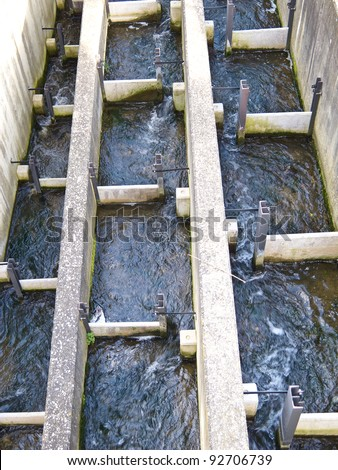Top down view of a fish ladder - stock photo