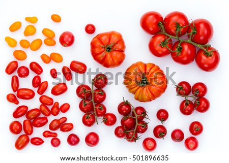 Top down view on raw cherry, grape and gourmet red and yellow tomatoes on white background