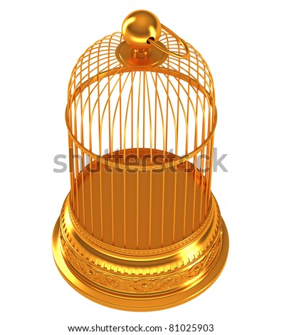 Top side view of Golden birdcage isolated over white background