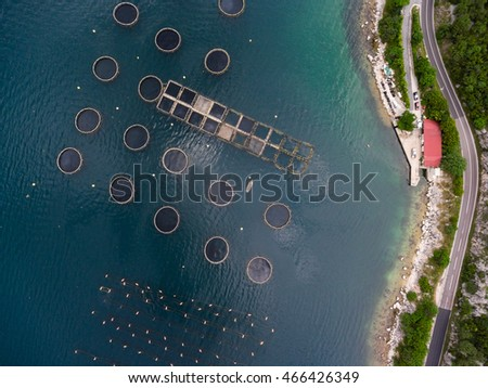 Top view at the round ponds encircled with net of fish farm in Adriatic sea, Kotor bay. Montenegro